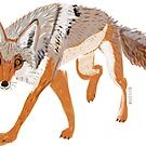 Totem coyote full body by belettelepink