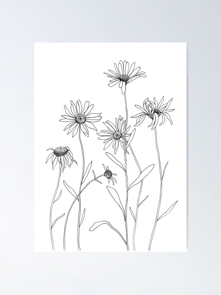 Alternate view of Daisies Poster
