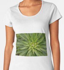 Fractals Women's Premium T-Shirt