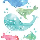 Whales by MariMansfield