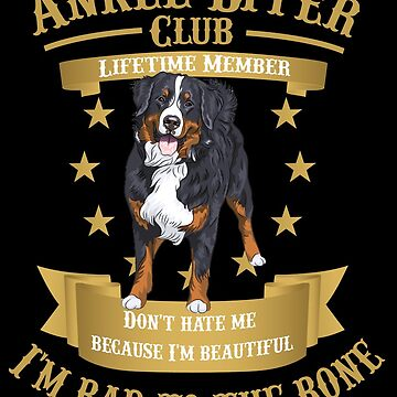 Bernese Mountain Dogs are bad to the Bone by rodie9cooper6