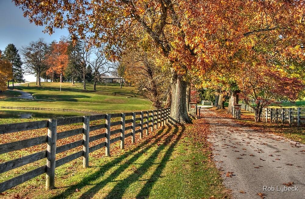 Crebilly Farm Drive by Rob Lybeck