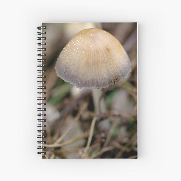 Morning Cap Spiral Notebook