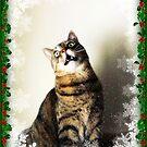 Merry Christmas!! by jodi payne