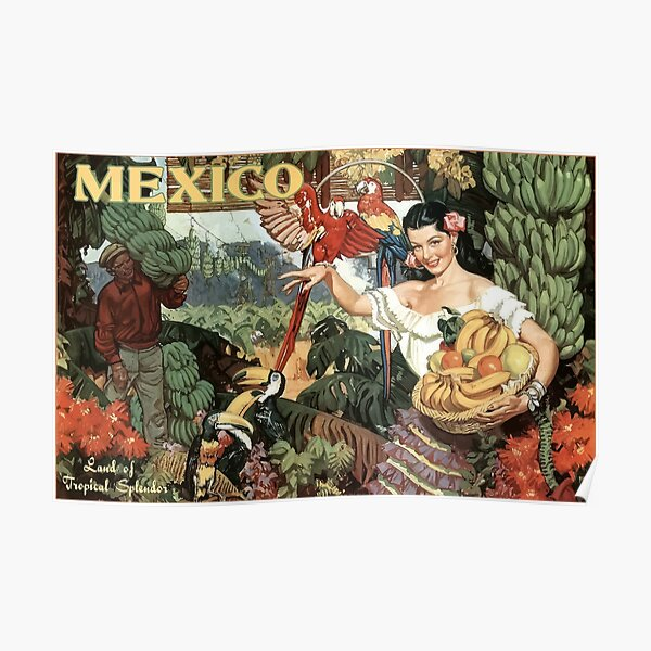 Vintage Travel Poster Mexico Poster
