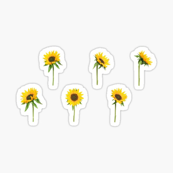 small sunflowers Sticker