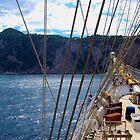 Clipper ship bow ! by Nancy Richard
