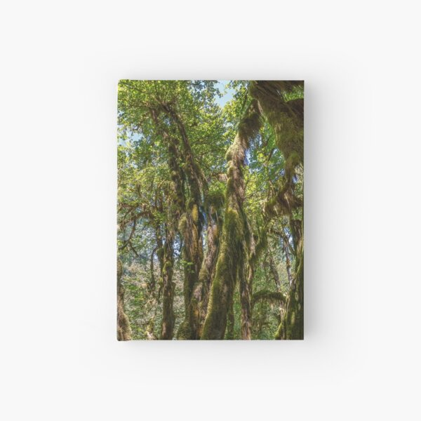 Hoh Rainforest Hardcover Journal