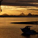 View to the Glass House Mountains - Bribie Island by Barbara Burkhardt