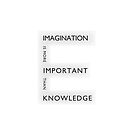 Imagination is more important than knowledge by Namoh