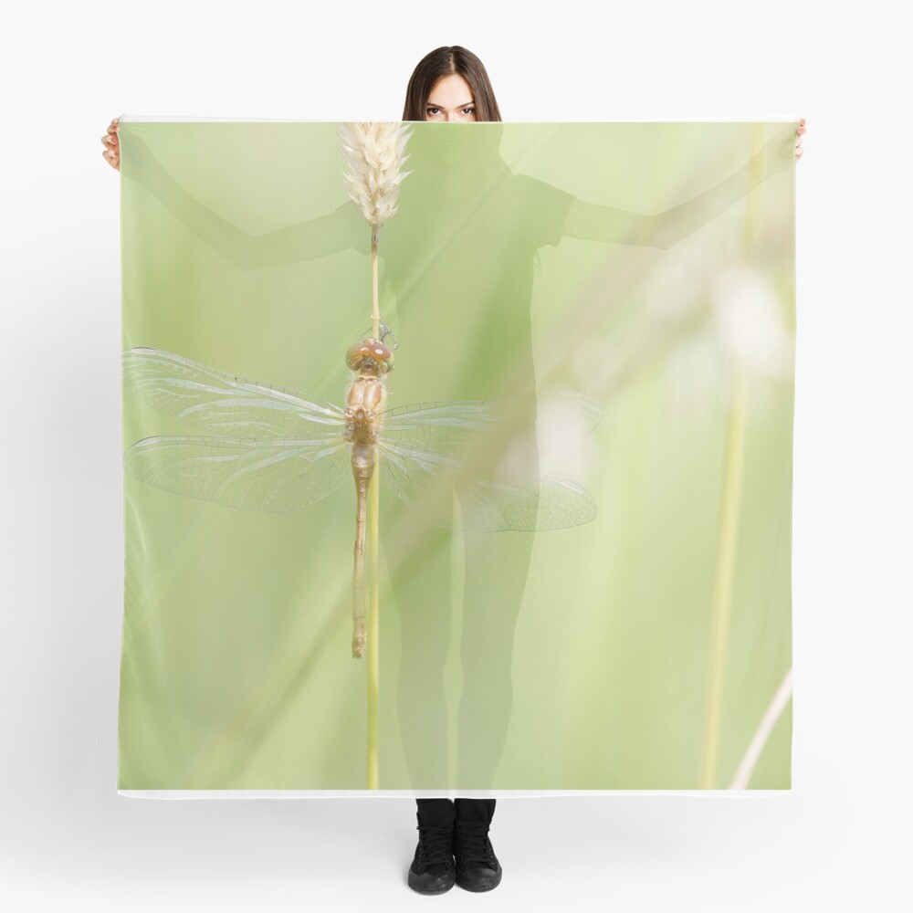 Soft morning glow Scarf