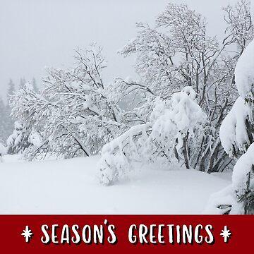 Snow-Flocked Forest Holiday Card by JaredManninen