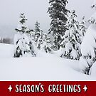 Winter Mountains and Forest Holiday Card by Jared Manninen