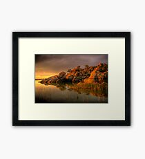 Willow Rock Framed Print