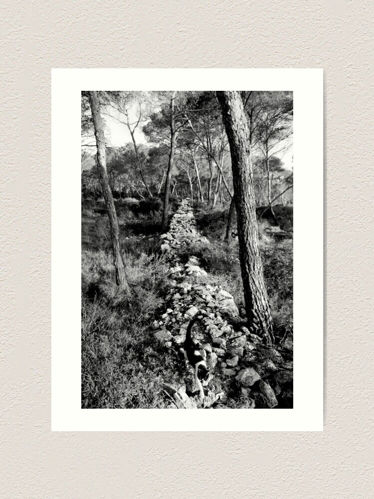 Alternate view of Free Forest Art Print