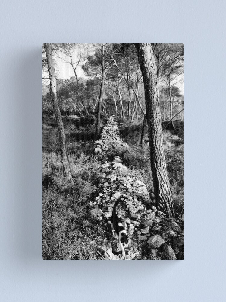 Alternate view of Free Forest Canvas Print