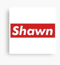 Shawn Mendes Canvas Print