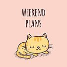 Weekend Plans Cute Napping Cat by rustydoodle