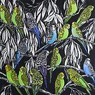 Budgies by Karen  Neal