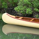 Kodachrome Canoe by andytechie