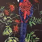 Crimson Rosella by Karen  Neal