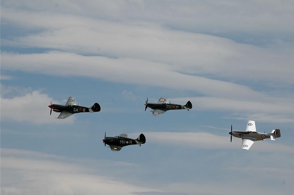Warbird Formation @ Temora Airshow 2007 by muz2142