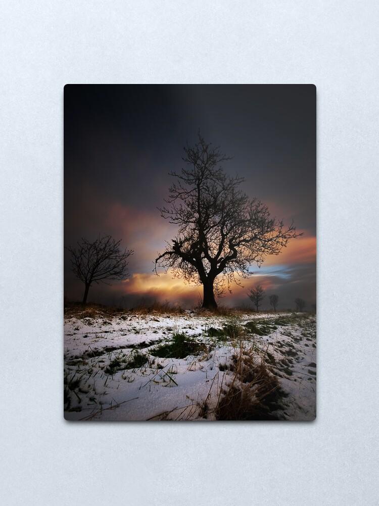 Alternate view of Christmas Trees Metal Print