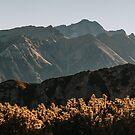 Autumn Peaks - Landscape and Nature Photography by ewkaphoto