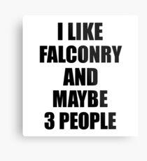 FALCONRY Lover Funny Gift Idea I Like Hobby Metal Print