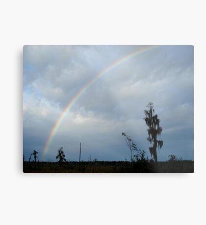 Rainbow over Econfina Creek 12/09 Metal Print