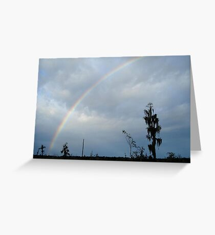 Rainbow over Econfina Creek 12/09 Greeting Card