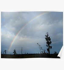 Rainbow over Econfina Creek 12/09 Poster