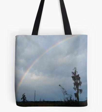 Rainbow over Econfina Creek 12/09 Tote Bag