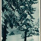 Vintage German Winter Germany Snow Cabin Travel Advertisement Art Posters by jnniepce