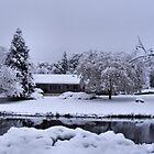 Snowy Wonderland by NancyC
