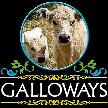 Galloway cow and calf by Vectorbrusher