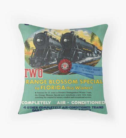 Vintage Seaboard Railway Florida Travel Advertisement Art Posters Throw Pillow