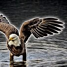 Eagle Amped Up by TJ Baccari Photography
