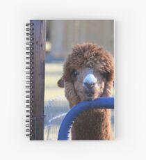 Alpaca and the blue gate Spiral Notebook