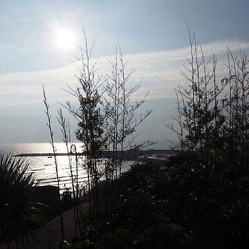 Serenity on a Winters Day.......Lyme Regis. Dorset UK by lynn45