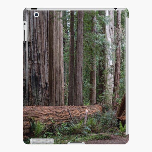 Redwoods iPad Snap Case