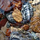 Mesmerized By The Creek Stones  by Kathilee