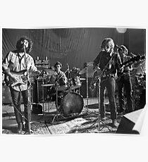 Grateful Dead -   Poster