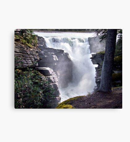 Athabaska Falls(2) Canvas Print