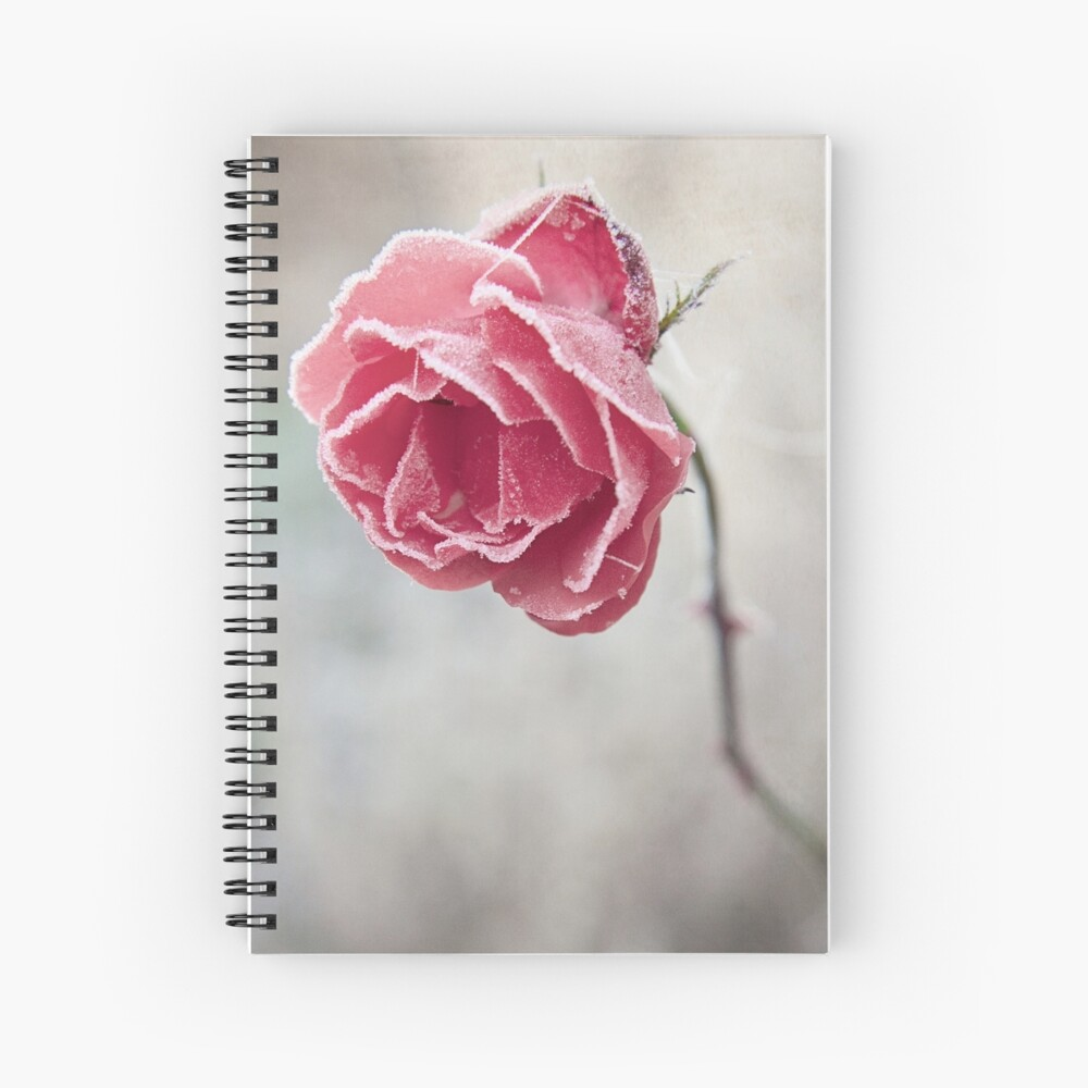 Frosted Red Rose Spiral Notebook