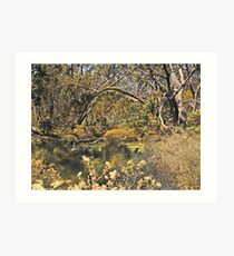 Keiser Park collection Art Print