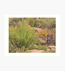 Keiser Park collection 3 Art Print