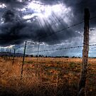 Ominous in the Valley by Bob Larson
