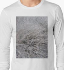 #Grass, #Stamford, #StamfordCity, #winter, #nature, #snow, #frost, #outdoors, #icee #cold, #wood, #season, #bird, #tree, #frozen, #dry, #garden, #grass, #weather, #horizontal, #colorimage, #nopeople Long Sleeve T-Shirt