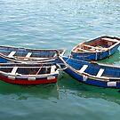 Fishing-fleet by Arie Koene